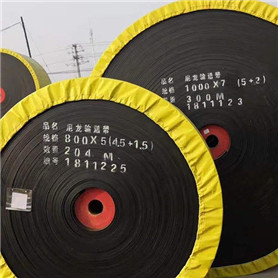 Powered Conveyor Belt